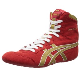 Wrestling Shoe Review Guide