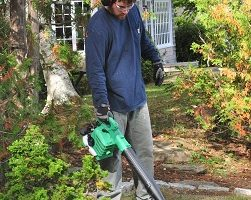 Leaf Blower Review Guide