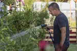 The Best Retractable Garden Hose